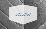 Departamento de Biología